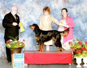 Rumor 3rd Place Gordon Setter Nationals