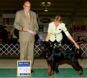 Legace Won Best Gordon Puppy in 2009